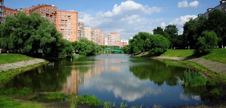 Владимир Шапкин: Механизм изъятия земельных участков для реализации проектов комплексного развития территорий в Московской области будет разработан к марту